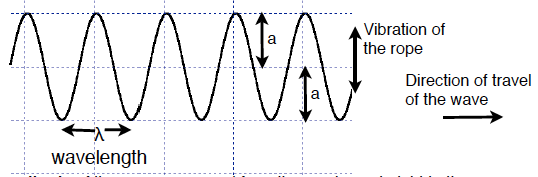 Transverse wave measurements of wavelength and amplitude