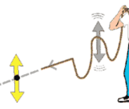 Waveing the end of a rope up and down produces longitudinal waves in a rope
