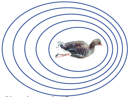 Simple doppler Effect example of the waves around a swimming duck